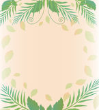 Background with leaves and Fern Royalty Free Stock Image