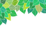 Background with leaves. Royalty Free Stock Images