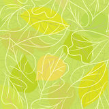 Background from leaves. Seamless green bckground from leaves Royalty Free Stock Image
