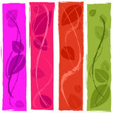 Background Leaves Shows Design Colour And Template Royalty Free Stock Photo