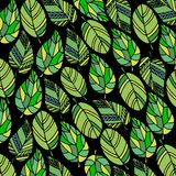 Background of leaves. vector design nature green leaves. Background of leaves. vector design nature green Royalty Free Stock Images