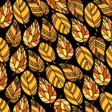 Background of leaves. vector design nature orange leaves. autumn. Background of leaves. vector design nature orange leaves Royalty Free Stock Photography