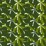 Background with leaves. Vector pattern. Background of leaves. Vector pattern. Vector texture with hand drawn leaves and plants Stock Photo