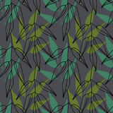 Background with leaves. Vector texture with hand drawn leaves and plants. Vector pattern. Stylised flat different kind. Background of leaves. Vector pattern Stock Images