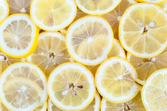 Background of lemon slices Royalty Free Stock Images