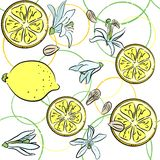 Background with lemons Royalty Free Stock Photo