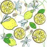 Background with lemons Stock Photo
