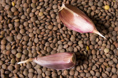 Background with lentils and two garlic Stock Images