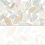 Background with light leaves Stock Photo
