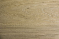 Background light oak wood, textures. Light oak wood texture with veins Stock Image