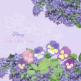 Background with lilac and pansies Stock Images