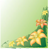 Background with lilies Royalty Free Stock Photography