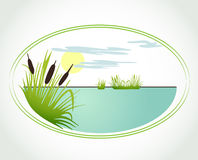 Background with lily and cane. Vector card. Background with lily and cane. Vector illustration Stock Photos