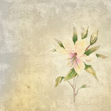 Background with lily flower. Floral background - picture in retro style stock images