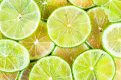 Background of lime slices Royalty Free Stock Photo