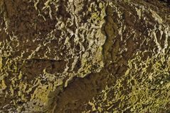 Background limestone rock. Background from a limestone cliff covered with green moss Royalty Free Stock Image