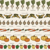 Background of lined vegetables in vintage tone Stock Photo