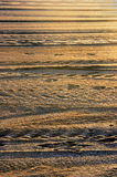 Background of lines on sand Royalty Free Stock Image