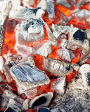 Background of Live Coals Royalty Free Stock Images