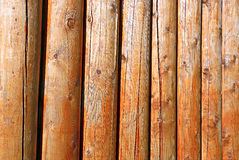 Background of log stockade. Covered with a varnish Royalty Free Stock Photos