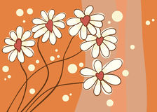 Background with love chamomile Stock Image