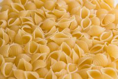 Macaroni in the form of shells approximated macro stock images