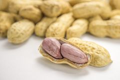 Background macro picture boiled peanuts. Open shell Stock Image