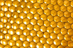 Background. Macro shot of a honeycomb in soft evening light royalty free stock photo