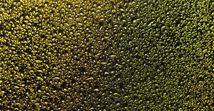Background made of beautiful shiny bubbles on the  glass Royalty Free Stock Image