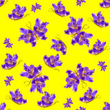 Background made of butterflies of various flowers Stock Photo