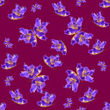 Background made of butterflies of various flowers Stock Images