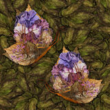 Background made of butterflies of various flowers Stock Image