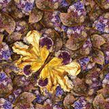 Background made of butterflies of various flowers Royalty Free Stock Images