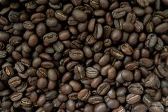 Background made of coffee beans royalty free stock photos