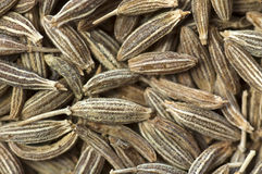 Background made of cumin seeds Royalty Free Stock Photos