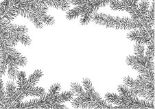 Background made of fir branches. Vector frame from Christmas tree branch for decorate. Black lush branch of spruce with Stock Photography