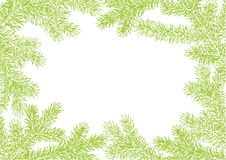Background made of fir branches. Vector frame from Christmas tree branch for decorate. Green lush branch of spruce with Royalty Free Stock Photos