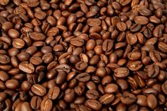 Background made of the fried grains of coffee Stock Photography