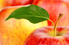 Background made from many apples with leaf Royalty Free Stock Image