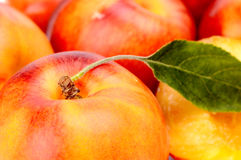 Background made from many nectarines with leaf Royalty Free Stock Image