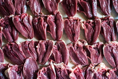 Background made out of real duck hearts Royalty Free Stock Image
