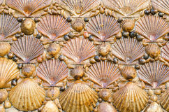 Background made with oyster shells. Royalty Free Stock Photography