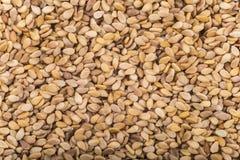 Background made of sesame seeds Stock Photos