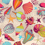 Background made of shells Stock Image