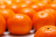 Background of mandarin. Background of many orange mandarin Royalty Free Stock Image