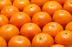 Background from  mandarins. Background from a large number tangerine Royalty Free Stock Image