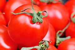 Background of many cherry tomatoes Royalty Free Stock Image