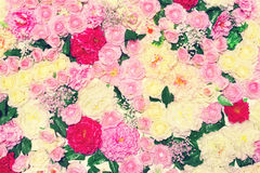 Background many flowers, floral decoration wall. Gentle pastel toned colors Royalty Free Stock Photography