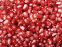 Background pomegranate seeds Stock Images