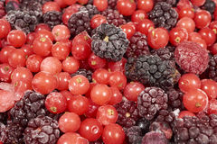Background of many frozen berry fruits Stock Photography